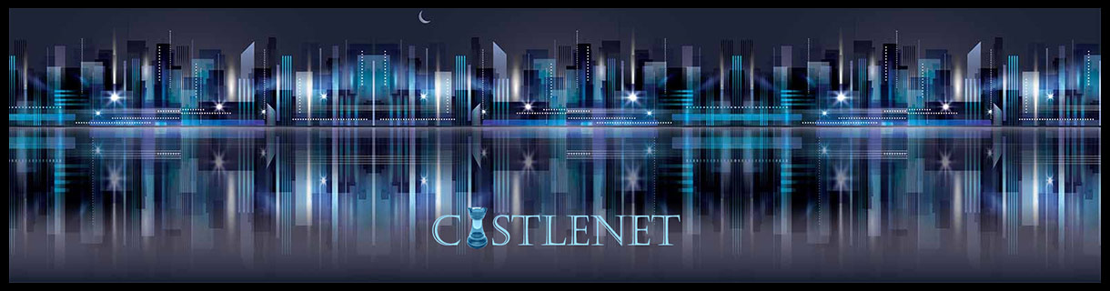 Castlenet web design and development