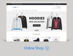 Dream online shopping website theme and design template