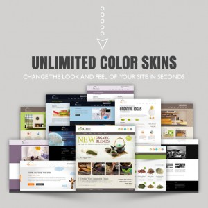 U-design colour skins - website theme and design template