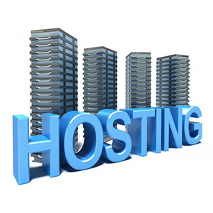 Website hosting and server support services