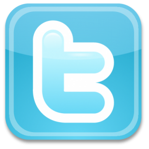 Twitter social media and SEO techniques.
