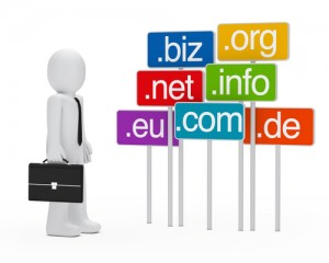 Domain name choices for your online business.